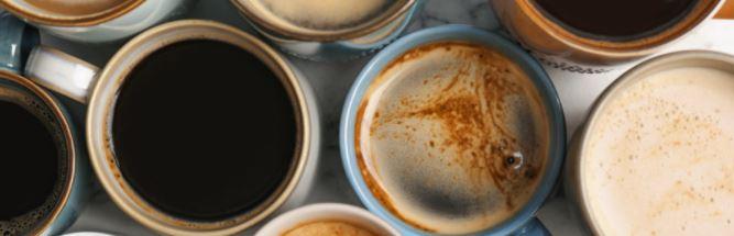 de beste koffieleverancier